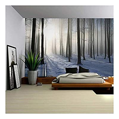 Handsome Design, A Blanket of Snow in The Forest at Winter Time Wall Mural, Professional Creation