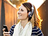 Polk Audio AM4219-A