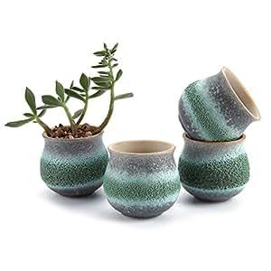 USB 2,75pulgadas cerámica verano Trio No. 1maceta suculentas/Cactus maceta maceta/recipiente/maceta verde
