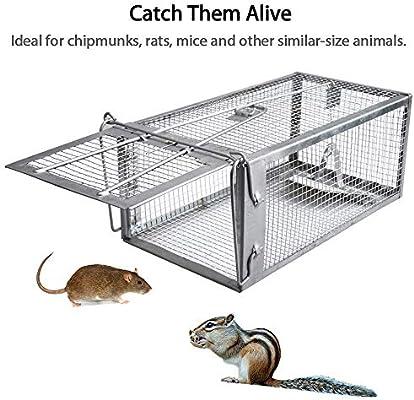 DYHQQ Jaula de trampas para Animales pequeños, hámsters, Topos ...