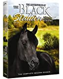 The Adventures Of The Black Stallion: The Complete Second Season