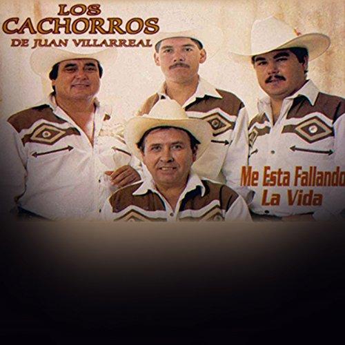 2 by Los Cachorros De Juan Villarreal on Amazon Music - Amazon.com