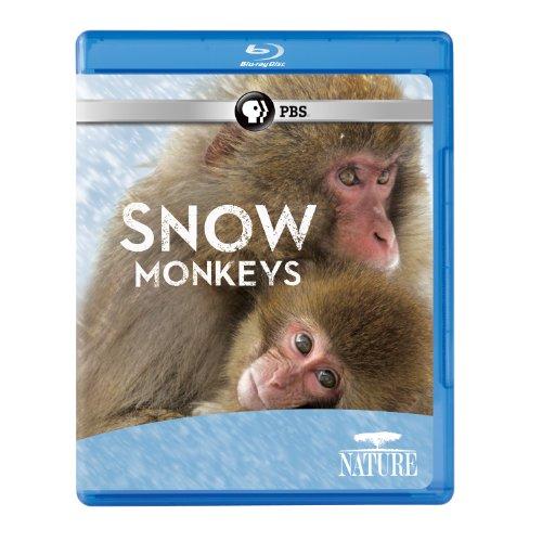 Nature: Snow Monkeys [Blu-ray]
