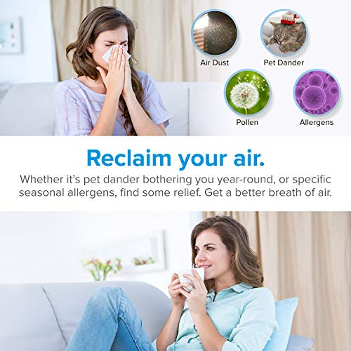 LEVOIT Air Purifier for Home with True HEPA Filter, Air Cleaner for Allergies and Pets, Smokers, Quietly Eliminates Odor, Dust for Bedroom with Optional Night Light, 2-Year Warranty, LV-H132, 2Pack