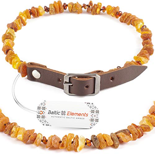 Baltic Elements Amber Dog Collar, Amber Collar for Dogs and Cats Made of 100% Natural Raw Amber Beads with Adjustable Genuine Leather Belt