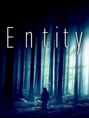 Entity -
