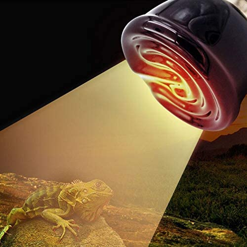 200W Crecimiento Invernal de Mascotas L/ámpara de Calentamiento de cer/ámica con absorci/ón de Calcio l/ámparas de Calor de terrario Blanco 220-240V PROBEEALLYU Reptiles Bombilla de Calor