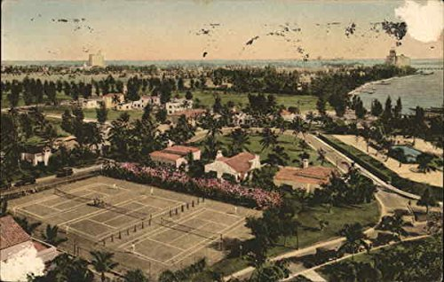 (The Flamingo Grounds Miami Beach, Florida Original Vintage Postcard)