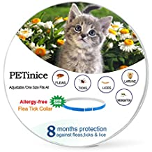 10 Best Seresto 8 Month Flea And Tick Collar For Dogs