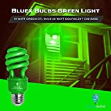 4 Pack BlueX CFL Green Light Bulb 13W - 50-Watt