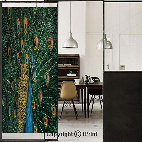 Peacock Decor 3D Decorative Film Privacy Window Film No Glue,Frosted Film Decorative,Portrait of The Peacock During Courtship Display Eye Spotted Tail Tropics Natural,for Home&Office,17.7x59Inch