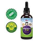 Cheap Organic Elderberry Syrup for Kids – Berry Good – Best Natural Pure Elderberry Blend for Sickness Relief, 3X Stronger Vegan & Sugar-Free Formula to Strengthen Immune System