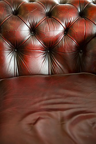 Home Comforts LAMINATED POSTER Leather Sofa Background Poste