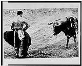 Photo: Matador Emilio Redondo holds cape before bull,1960,Madrid,Spain,Bullfighting