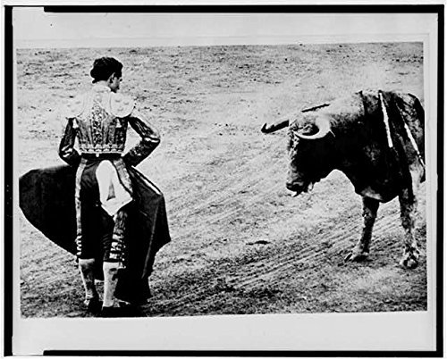 Photo: Matador Emilio Redondo holds cape before bull,1960,Madrid,Spain,Bullfighting by Infinite Photographs