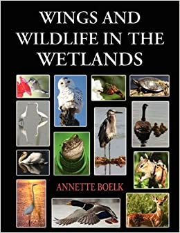 Book Wings and Wildlife in the Wetlands