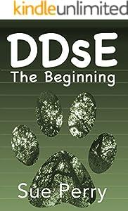 DDsE: The Beginning