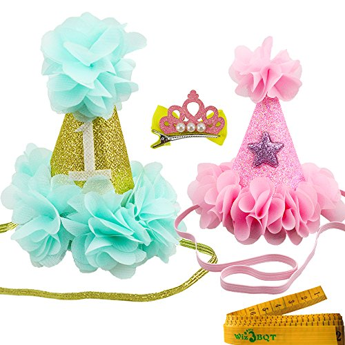 2 Pcs Adorable Cute Cat Dog Pet Birthday Hair Head Bands Accessories and a Crown Shaped Hair Clip for Kitten Puppy Small Dogs Cats Pets (Blue and Pink)