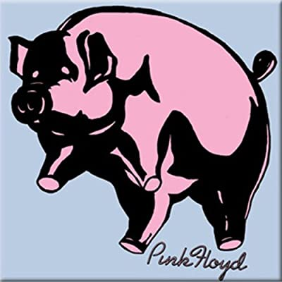 C&D Visionary Licenses Products Pink Floyd Pig Magnet: Toys & Games