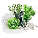 biOrb Easy Plant Sets