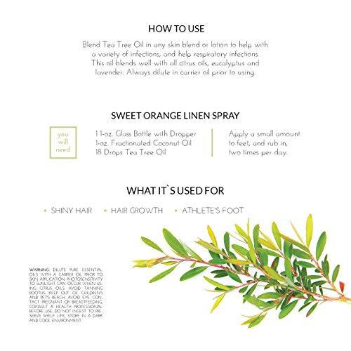 ArtNaturals 100% Pure Tea Tree Essential Oil - (4 Fl Oz/120ml) - Natural Premium Melaleuca Therapeutic Grade - Great with Soap and Shampoo, Face and Body Wash - Treatment for Acne, Lice by ArtNaturals (Image #3)