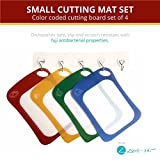 Flexible Plastic Cutting Board Mat Set With Food Icons | Self – Healing and Scratch Resistant Cutting Board Set | Dishwasher Safe BPA-FREE Cutting Mats (Set Of 4 Color Coded) by Zone – 365