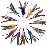 """Go Cat Da Bird """"Super Refill"""" 12-Pack (Genuine Guinea Feathers)"""