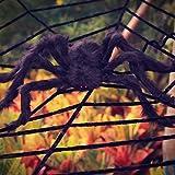 OTBBA Halloween Decorations, Giant Spider Decorations and 12FT Spider Web Decorations Creepy Decor for Halloween Outdoor Indoor