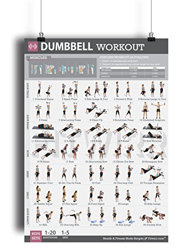 Dumbbell Exercises Workout Poster - LAMINATED - Strength ...