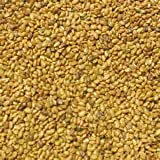 Alfalfa Seed 1lb Bag