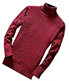 LOKOUO Fashion Mens Knit Slim Fit Turtleneck Soft Warm Pullovers Sweaters Wine RedUS Large
