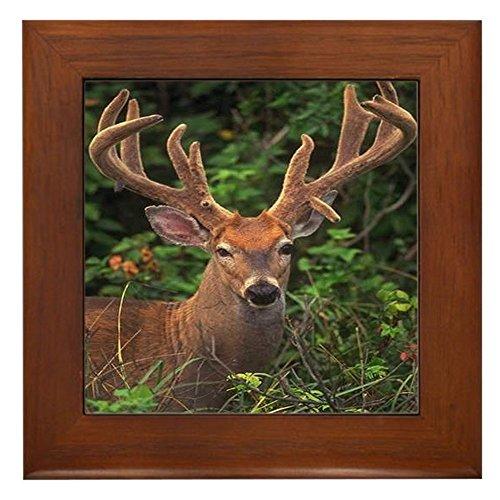 Tile Framed Deer - CafePress - Deer Framed Tile - Framed Tile, Decorative Tile Wall Hanging
