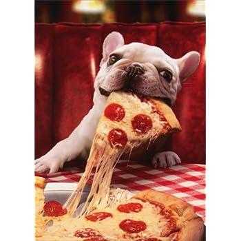 Amazon prairie dog in underwear avanti funny birthday card dog with cheesy pizza slice avanti funny bulldog birthday card m4hsunfo