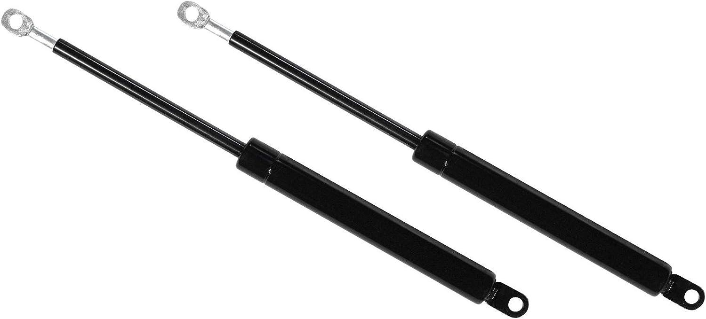 Pack 2 amortiguadores (1000 Newtons) para canape abatible de ...