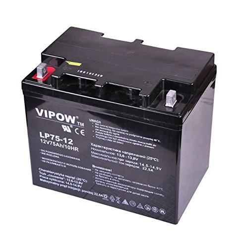 VIPOW Car Battery Gelakku Replacement Battery Gel Battery 12 V 75Ah: