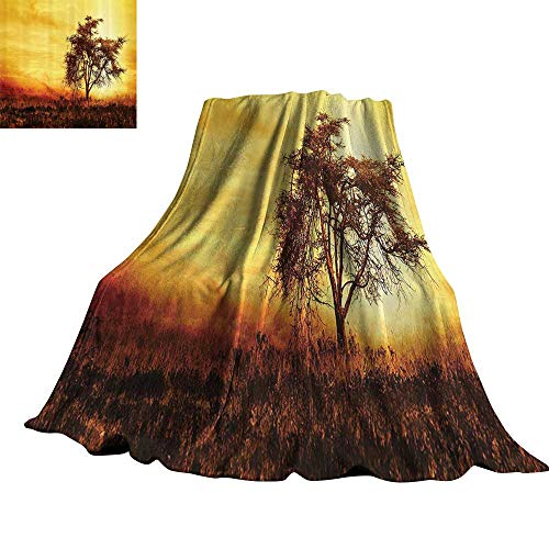 (WinfreyDecor Room Decorations Collection Warm Blanket Big Tree Silhouette Image of Nature at Africa Summer Evening of Masai Mara Image 60