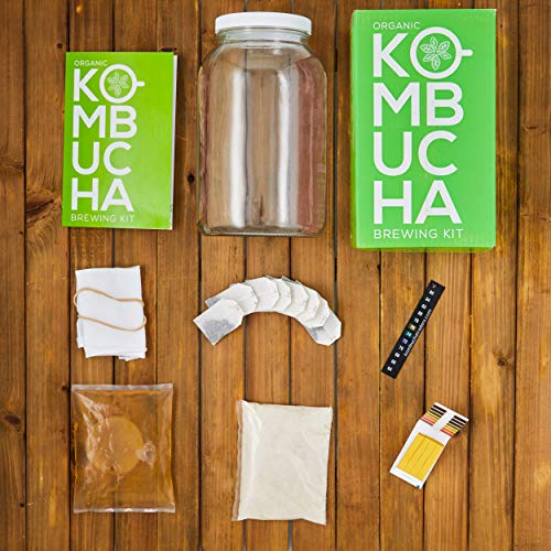 Buy organic kombucha starter kit