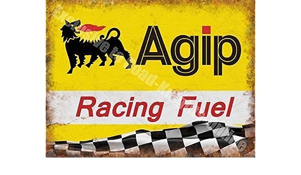 Agip Carreras Gasolina Aceite Motorsport Motor Carreras Garaje Metal/Cartel Para Pared De Acero - 20 x 30 cm: Amazon.es: Hogar