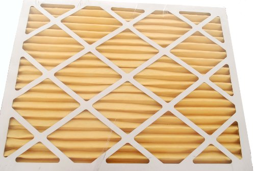AllergyZone AZ16251 Air Filter for Allergy Sufferers, 16 x 25 x 1""