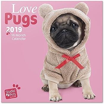 Grupo Erik editores Studio Pets – Calendar 2019 Pugs, 30 x 30 cm