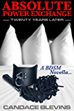 Absolute Power Exchange - Twenty Years Later: A BDSM Novella