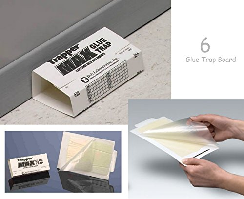 trapper-max-glue-traps-6-glue-boards-trap-mouse-bugs-insects-bed-bugs-spiders-cockroaches-non-toxic