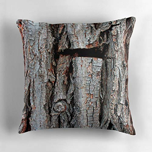 Uwwrticm Weeping Willow Tree Bark Decorative Throw Pillow Cover Accent Pillow Case Cushion Cover Sofa, 18x18 inch (45x45cm) (Willow Weeping Bark)