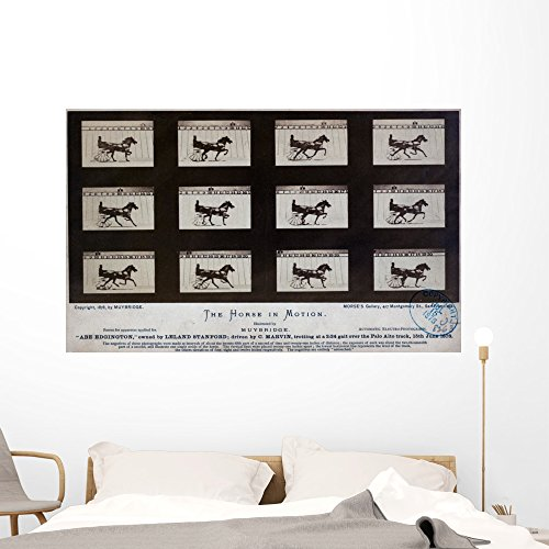 Wallmonkeys The Horse in Motion Eadweard Muybridge Wall Decal Peel and Stick Graphic WM240155 (60 in W x 37 in H)