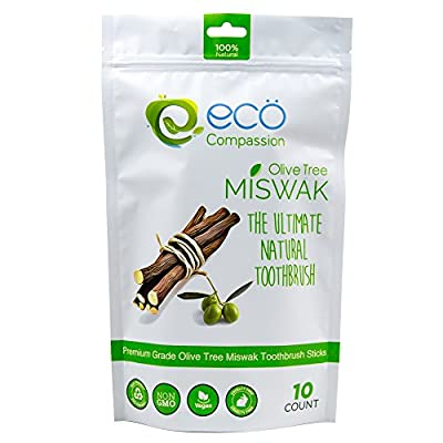 10 Wild Olive Miswak Sticks by Eco Compassion | 100% Natural Healthy Manual Toothbrush | Eco Friendly Sewak Chewing Stick for Teeth Whitening | Whiter Teeth, Fresher Breath | Zaitoon Aswad Zaytoun