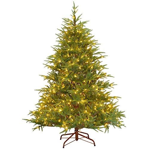 National Tree 6.5 Foot Frasier Grande Tree, Ft (Trees Fir Grand Christmas)