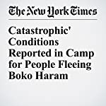 'Catastrophic' Conditions Reported in Camp for People Fleeing Boko Haram | Nick Cumming Bruce,Dionne Searcey