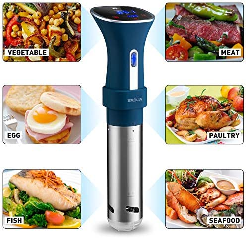 Sous Vide Cooker Immersion Circulator – Digital Thermometer with Accurate Temperature Timer Control, 800 Watts