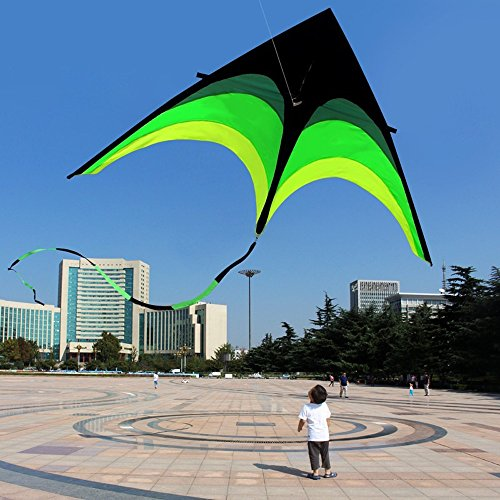 (Transser Colorful Rainbow Flying Fish Kite - Easy Flyer Toys for Children Kids Outdoor Fun Flying Games And Sports Activities (Black))