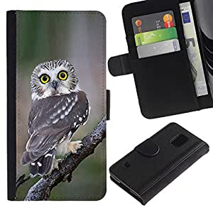 KingStore / Leather Etui en cuir / Samsung Galaxy S5 V SM-G900 / Plumes Nature Ailes
